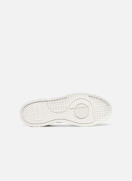 Sneakers adidas originals Supercourt Blå se foroven