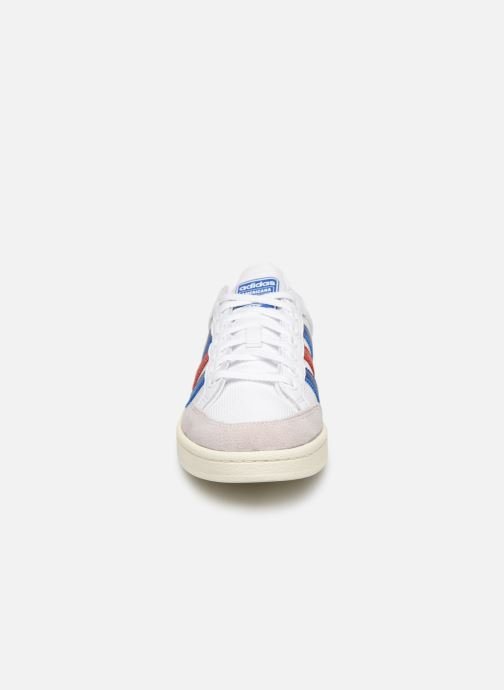 adidas originals Americana Low (Blanc) - Baskets (391812)