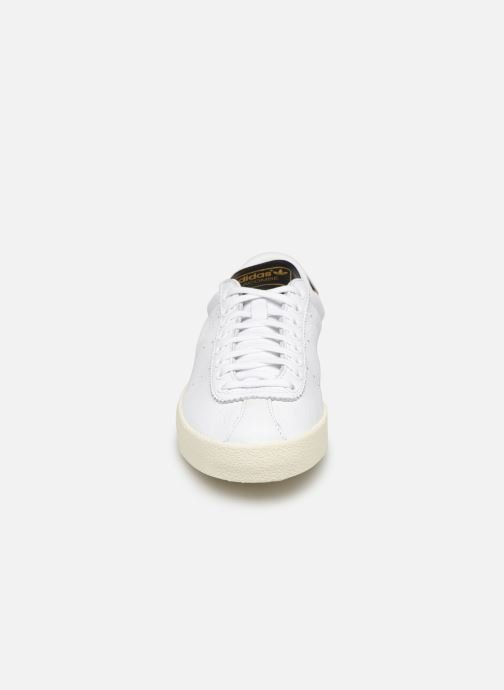 Trainers adidas originals Lacombe White model view