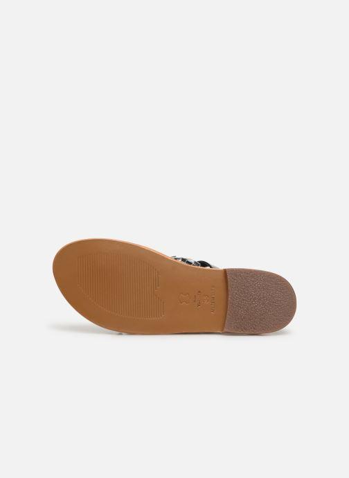 Sandales et nu-pieds White Sun Colorata Noir vue haut