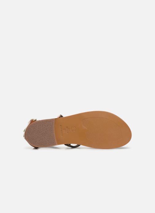 Sandales et nu-pieds White Sun Valizas Marron vue haut