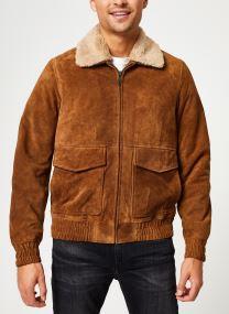 Vêtements Accessoires Suede pilot jacket with teddy collar