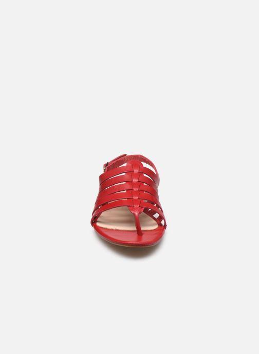 Sandali e scarpe aperte Bluegenex B-2253 Rosso modello indossato