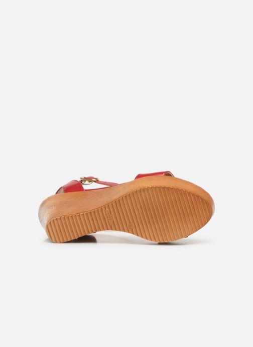 Sandali e scarpe aperte Bluegenex B-2261 Rosso immagine dall'alto