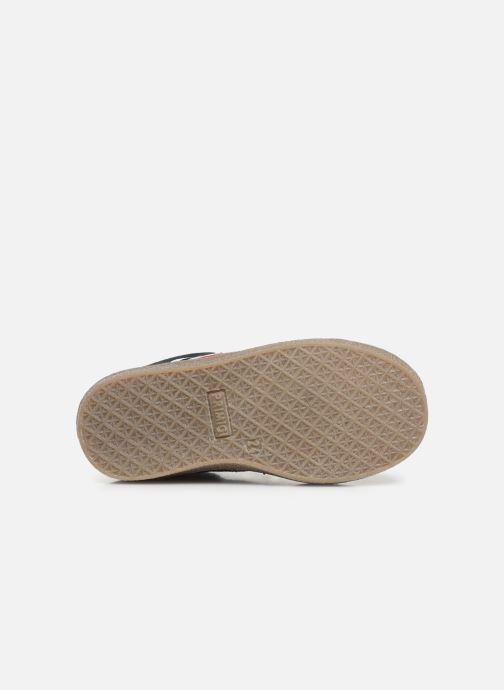 Sneakers Primigi PHM 44176 Blå se foroven