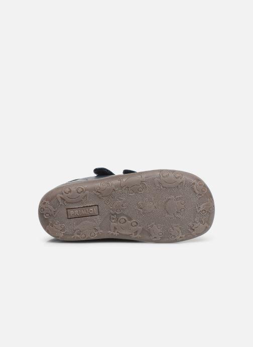 Sneakers Primigi PLN 44082 Blauw boven