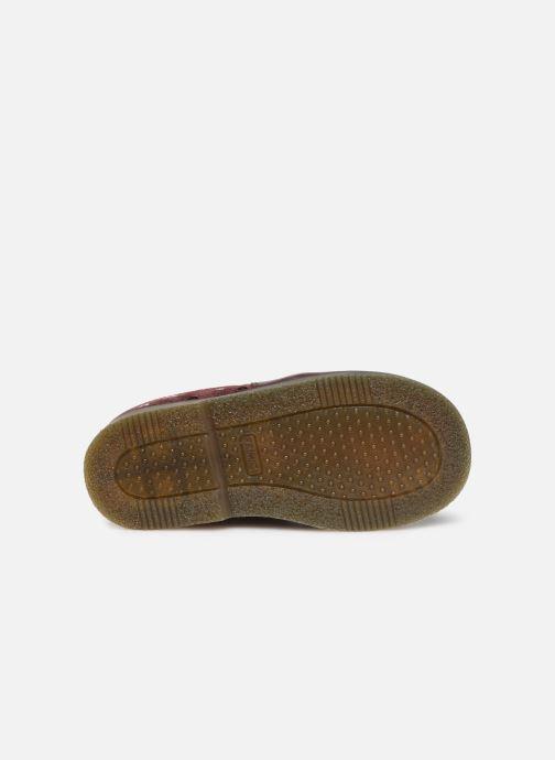 Bottines et boots Primigi PTA 44162 Noir vue haut