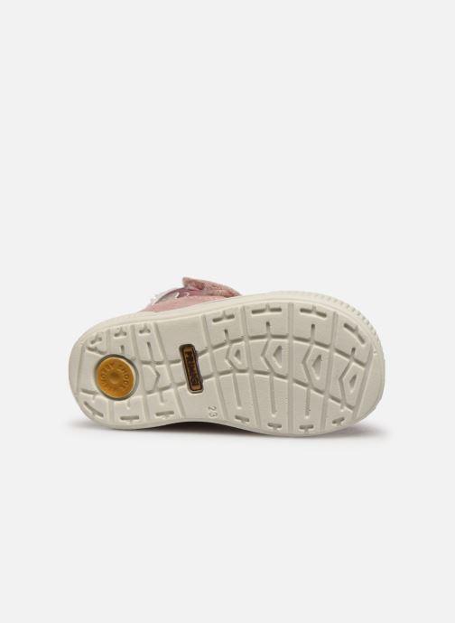 Chaussures de sport Primigi PRI GTX 43687 Rose vue haut