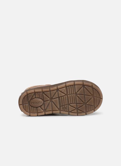 Sneakers Primigi PAW 44138 Marrone immagine dall'alto