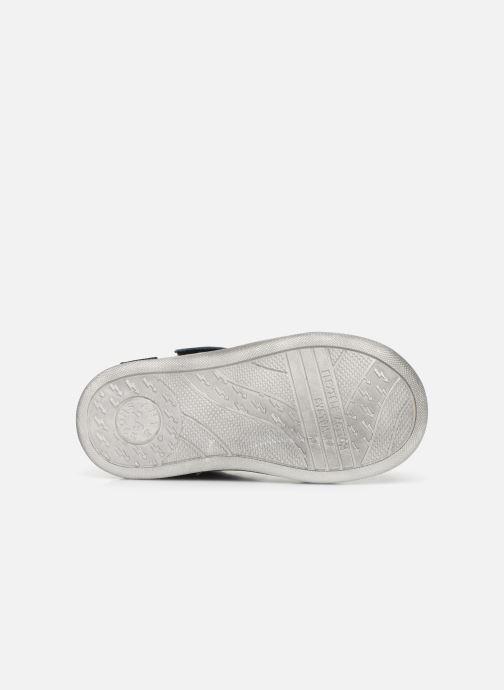 Sneakers Primigi PLK 44040 Blauw boven