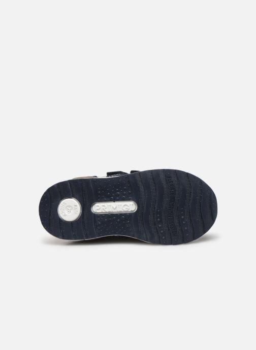 Sneakers Primigi PBJ 44514 Azzurro immagine dall'alto