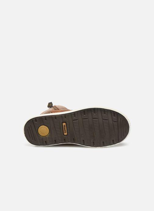 Sneaker Primigi PBY GTX 43922 braun ansicht von oben
