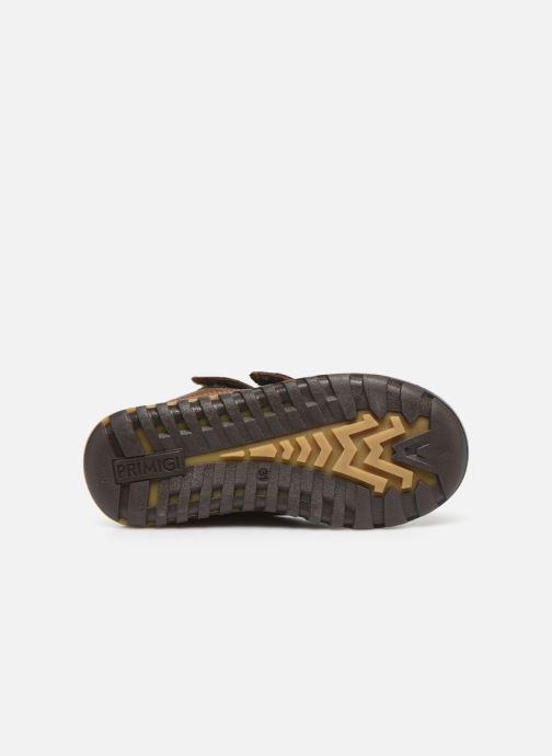 Chaussures de sport Primigi PTC GTX 44361 Marron vue haut