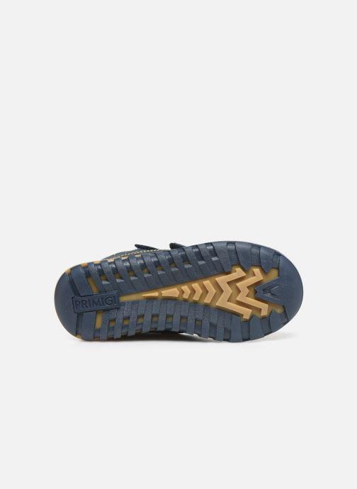 Chaussures de sport Primigi PTC GTX 44361 Bleu vue haut