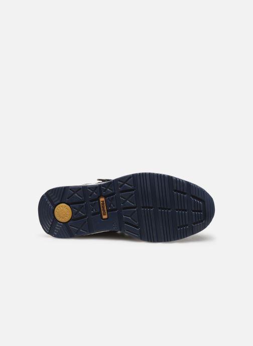 Baskets Primigi PTBGT 43895 Bleu vue haut