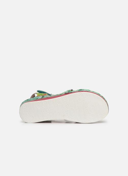 Sandales et nu-pieds Laura Vita Brcuelo 55 Vert vue haut