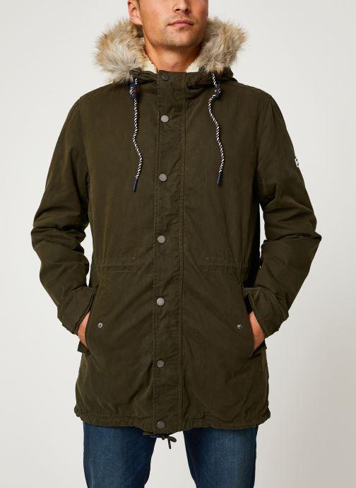 Vêtements Tommy Jeans TJM COTTON LINED PARKA Vert vue droite
