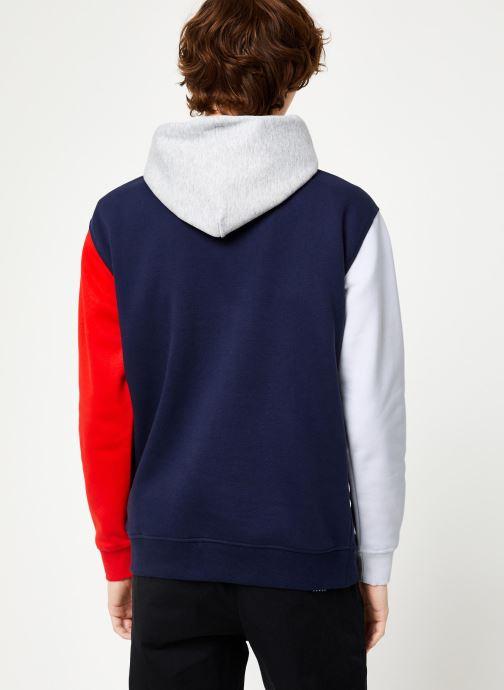 Kleding Tommy Jeans TJM COLORBLOCK CLASSICS HOODIE Blauw model