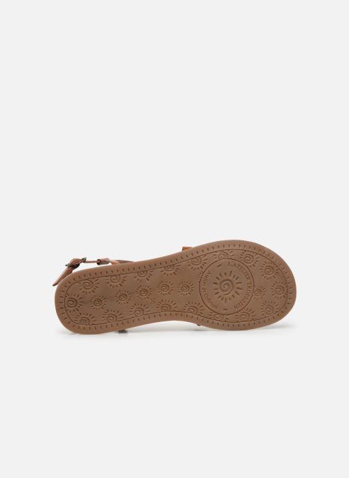 Sandales et nu-pieds L'Atelier Tropézien Carla Marron vue haut