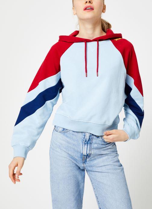 Vêtements Wrangler Raglan Sweat Bleu vue détail/paire