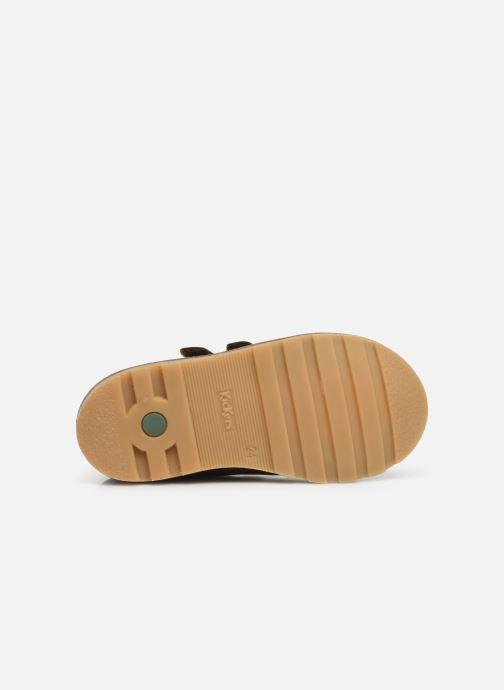 Boots en enkellaarsjes Kickers Nonomatic Groen boven