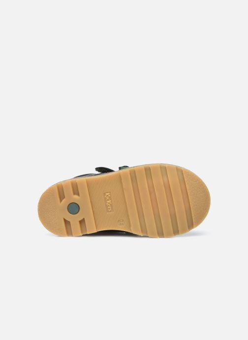 Stiefeletten & Boots Kickers Nonomatic grün ansicht von oben