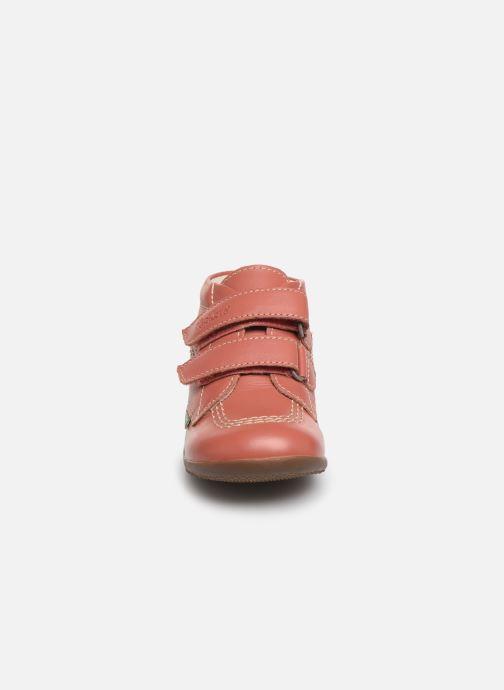 Stivaletti e tronchetti Kickers Bikro Rosa modello indossato