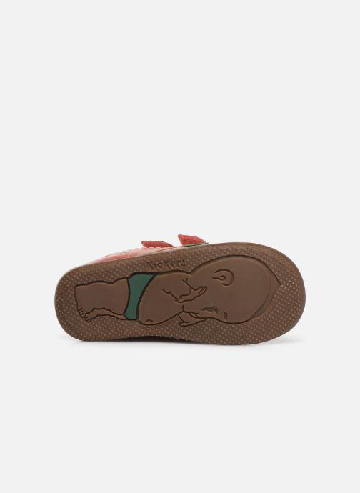 Bottines et boots Kickers Bikro Rose vue haut