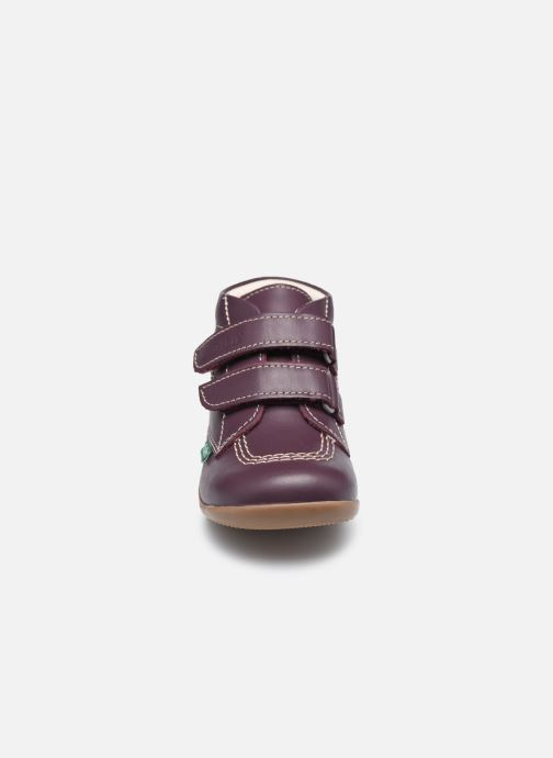 Botines  Kickers Bikro Violeta      vista del modelo