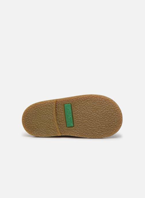 Chaussures à scratch Kickers Takono Or et bronze vue haut