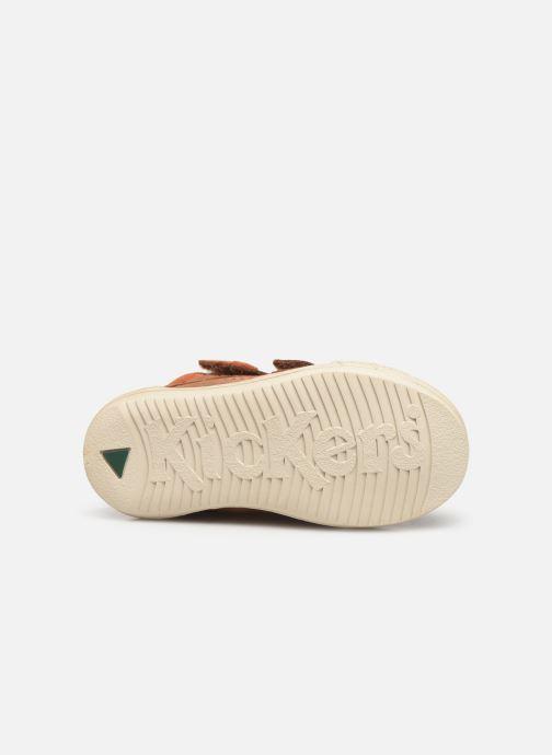 Sneakers Kickers Jawa Bruin boven