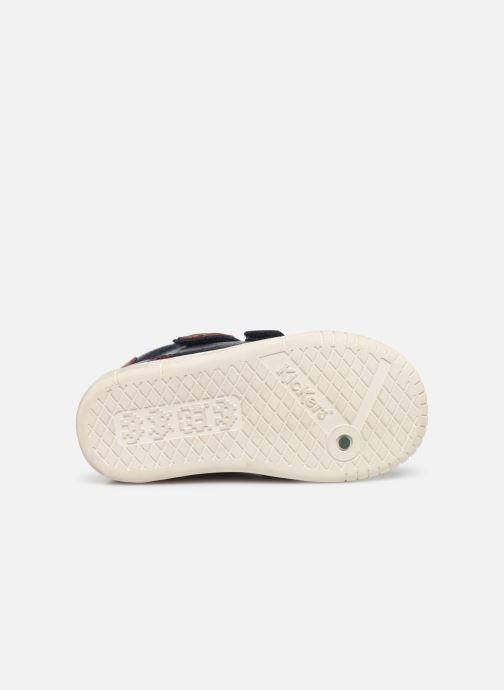 Sneakers Kickers Wip Blauw boven