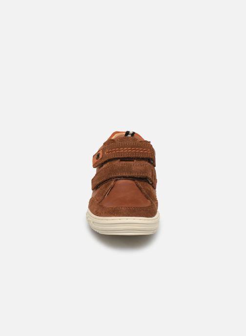 Sneakers Kickers Jammi Bruin model