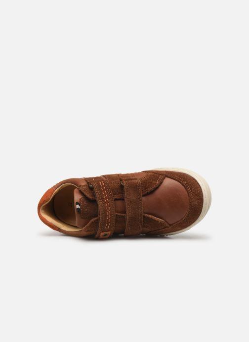 Sneakers Kickers Jammi Bruin links