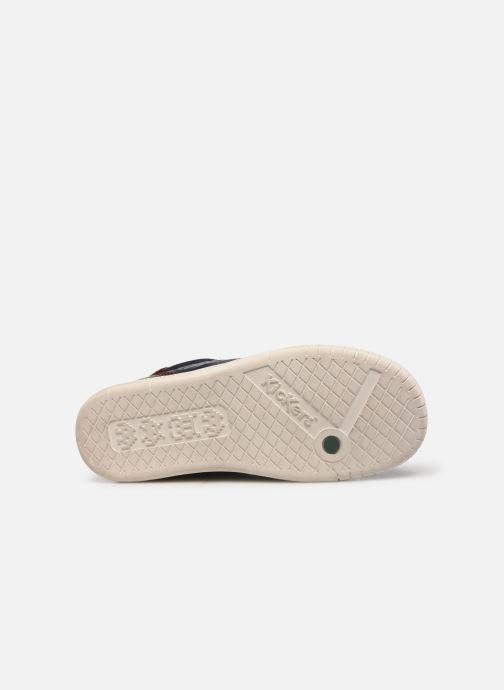 Sneakers Kickers Winley Blauw boven