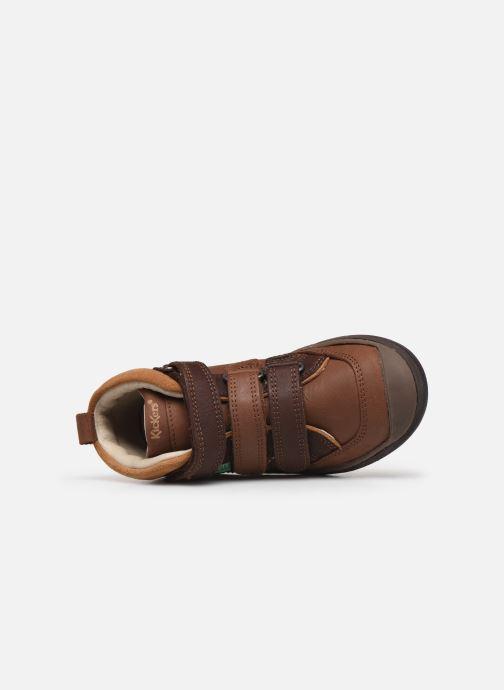 Sneakers Kickers Iristrap Bruin links