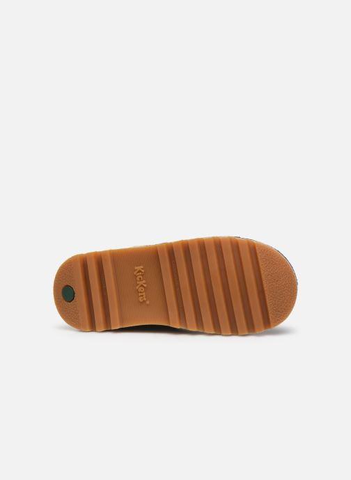 Stiefeletten & Boots Kickers Neohook blau ansicht von oben