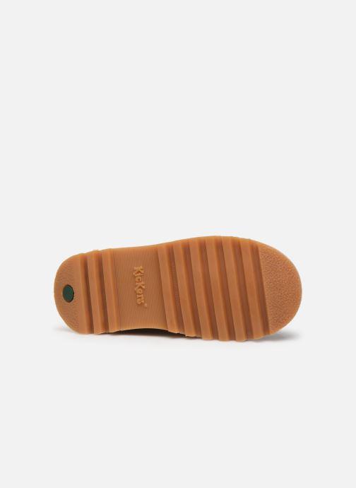 Boots en enkellaarsjes Kickers Neohook Bruin boven