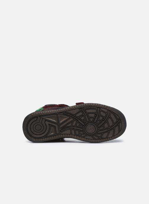 Sneakers Kickers Lohan Bordò immagine dall'alto
