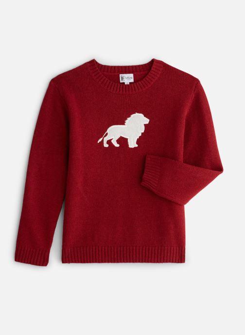 Vêtements Bobine Pull Boy Lion Rouge vue détail/paire