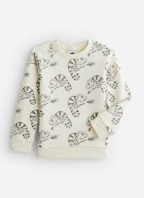 Sweatshirt Chameleon