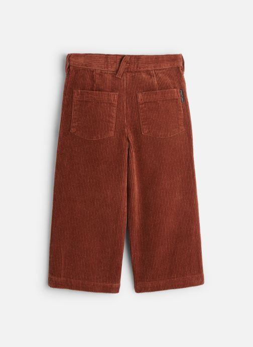 Vêtements Sproet & Sprout Corduroy Flair Pants Marron vue bas / vue portée sac