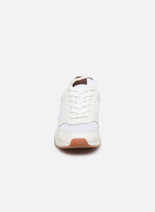 Trainers Pepe jeans Harlow New C White model view
