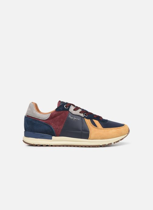 Trainers Pepe jeans Tinker Pro 19 Multicolor back view