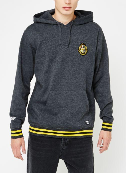 Vêtements Vans Harry Potter Hogwards PO Gris vue droite