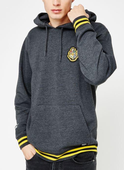 Vêtements Vans Harry Potter Hogwards PO Gris vue détail/paire