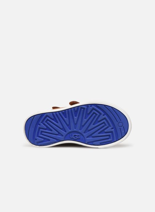 Sneakers UGG Rennon II Bruin boven