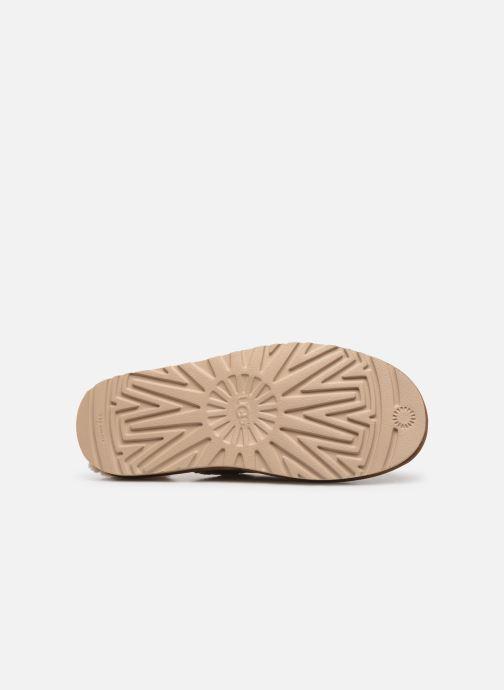 Pantofole UGG Tasman Slip-On Marrone immagine dall'alto