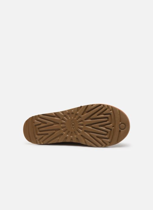 Slippers UGG Tasman Brown view from above