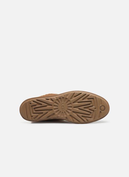 Stiefel UGG Classic Short BLVD braun ansicht von oben